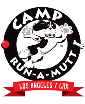Camp Run-A-Mutt Cage Free Dog Daycare & Boarding